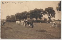 Enghien - Collège Saint-Augustin 1919 - Edingen