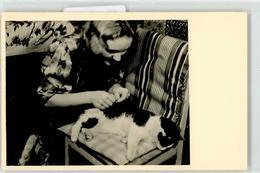52420085 - Frauchen Stuhl - Katten