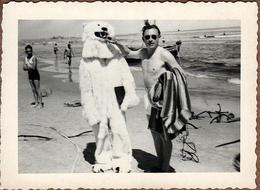 Petite Photo Originale Déguisement & Eisbär, Ours Blanc Polaire à La Plage Et Playboy Lui Mettant 1 Doigt Dans La Gueule - Anonymous Persons