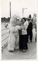 Photo Originale Déguisement & Eisbär, Ours Blanc Polaire Crooner & Dragueur De Fille à La Plage En 1953 - Identified Persons