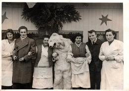 Photo Originale Déguisement & Eisbär, Ours Blanc Polaire & Câlin Avec La Marchande De Légumes En 1958 - Identified Persons