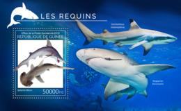 Guinea  2019 Fauna  Sharks  S201907 - Guinée (1958-...)