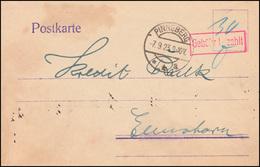 Infla-Notausgabe Gebühr-bezahlt-Stempel Postkarte PINNEBERG 7.9.23 Nach Elmshorn - Allemagne