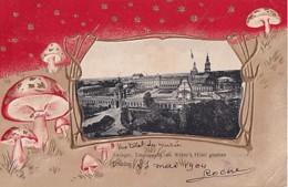 DRESDEN          ZWINGER TOTALANSICHT VON WEBER' HOTE.....   +  CHAMPIGNONS       CARTE EN RELIEF - Dresden