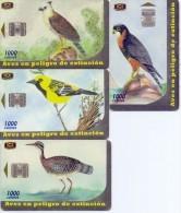 Used Phone Cards Costa Rica Birds 4V. - Costa Rica