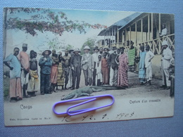 CONGO : Capture D'un Crocodile En 1905 - Congo - Kinshasa (ex Zaire)