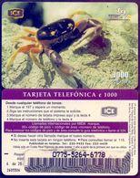 Used Phone Cards Costa Rica - Cangrejo De Tierra 1V. - Costa Rica