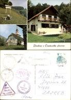 CEMSENISKA PLANINA,SLOVENIA POSTCARD - Slowenien