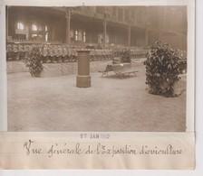 VUE GÉNÉRALE DE L'EXPOSITION D'AVICULTURE BIRDS OISEAU VOGELS PAJAROS 18*13CM Maurice-Louis BRANGER PARÍS (1874-1950) - Fotos