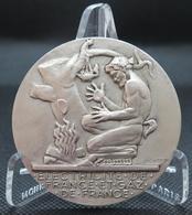 0025 - MEDAILLE ELECTRICITE DE FRANCE ET GAZ DE FRANCE - Bronze - H Dropsy - Autres