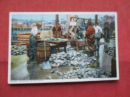 Detroit Publisher  --- Weighing The Catch       Ref    3567 - Fishing