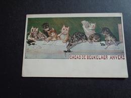 Publicité ( 18 ) Reclame   Cacao  De Beukelaer    Debeukelaer  Anvers  -  Chats  Chat  Katten  Kat - Publicité