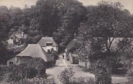 AL14 Cockington Village, Torquay - Torquay