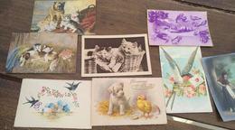 Lot De 9 Cartes Postales. Animaux. - Cartes Postales