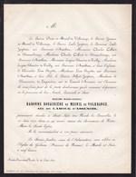 GODINNE SAINT-JOSSE Baronne Douairière De MESNIL De VOLKRANGE Née De LAROCK D'ASSENOIS 94 Ans 1870 HUYTTENS RUZETTE - Décès