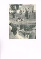 ARMEE BELGE : 2 Cartes Relatives Aux Chiens Dans L'armée. Non écrites. - Guerre 1914-18