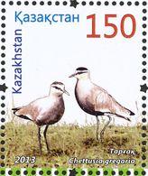 Kazakhstan. 2013  Vanneau Sociable . Sociable Lapwing - Other