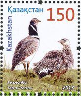 Kazakhstan. 2013  Outarde Canepetière. Little Bustard - Gallinaceans & Pheasants