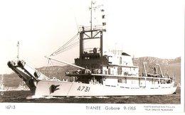 TIANEE - Gabare - Warships