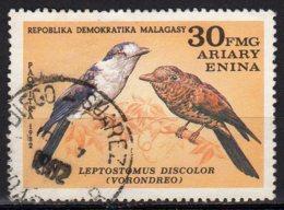 Madagascar Yvert N° 664 Oblitéré Oiseaux Lot 6-159 - Madagascar (1960-...)