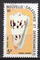 Nouvelle-Calédonie Yvert N° 481 Oblitéré Coquillages Lot 9-4 - Neukaledonien