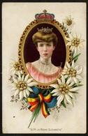RELIEF Postcard / CPA / ROYALTY / Belgique / België / Reine Elisabeth / Koningin Elisabeth / Herzogin In Bayern / 1911 - Familles Royales