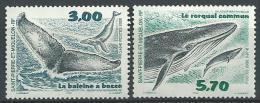 """SPM YT 707 & 708 """" Cétacés """" 2000 Neuf** - Unused Stamps"""
