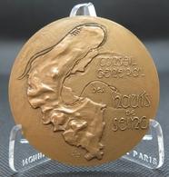 0039 - MEDAILLE CONSEIL GENERAL DES HAUTS DE SEINE - 1969 - Bronze - C Ruy - Autres