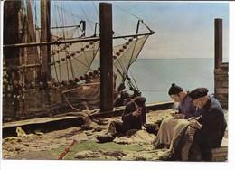 Fishermen After The Catch.  Denmark.  B-3603 - Fishing Boats