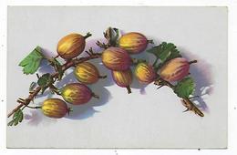 CPA - Fruit - Fruits - Groseilles - Groseille - Fiori, Piante & Alberi