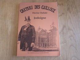 CHÂTEAU DES CAILLOUX Jodoigne Régionalisme Architecture Hector Defoër Dufour Dufort Egypte Salle Des Echos Hopital Parc - Belgique