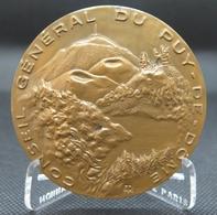 0041 - MEDAILLE CONSEIL GENERAL PUY DE DOME - Bronze - Emile Rousseau - Autres