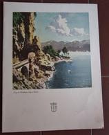 MENU ITALIA ITALIA LLOYD TRIESTINO ADRIATICA TIRRENIA MOTONAVE EUROPA ANNO 1953 LUNGO LA GARDESANA LAGO DI GARDA - Menu