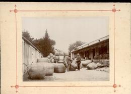 South Africa - Cape Town - Zuid Afrika - Wolhandel - Elim - West Kaap - Overberg - 1900 - Zuid-Afrika