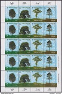 Argentina - 1999 - Richesse Forestière - Arbres - Lenga - Caldén - Quebracho Colorado - Petiribí - Argentina