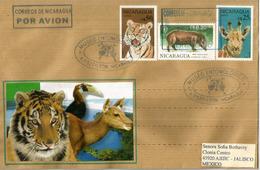 Le Tigre, Tapir De Baird,etc  Sur Lettre Nicaragua, Adressée Au Mexique - Felinos