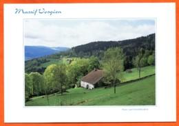 88 Massif Vosgien Ferme Des Hautes Vosges Paysage Carte Vierge TBE - France
