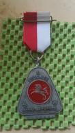 Medaille :Netherlands  - Enschede - E.W.B Ronde Van Twente. .  / Vintage Medal - Walking Association - Niederlande