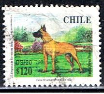 CHILI 329 // GRAN DANES // 1998 - Chile