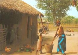 TD - République Du Tchad - Préparation Du Repas - Librairie Al-Akhbaar / Iris-Export N° 7622 (non Circ.) - Tschad