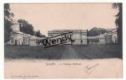 Seneffe (le Château Goffinet) - Seneffe