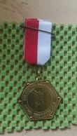 Medaille :Netherlands  - 25 E Northgo Wandeltocht - 6-7-1985 , Noorwijk.  / Vintage Medal - Walking Association - Niederlande