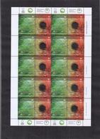 Argentina - 2004 - América - UPAEP. Protection De L'environnement Forêts Indigènes D'Argentine. - Yvert 2347 / 2348 - Argentinien