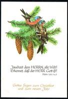C7293 - TOP Glückwunschkarte Weihnachten - Spruchkarte - Verlag Schäfer DDR - Noël