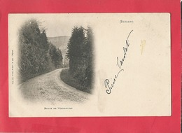 CPA -  Bussang  - Route De Wesserling - Bussang