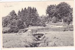 41459  -  Waimes  Fond  Du Moulin - Waimes - Weismes