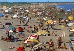Punta Sabbioni - Camping Marina Di Venezia - La Spiaggia - Formato Grande Viaggiata – E 13 - Venezia