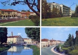 Castelfranco Veneto - Formato Grande Viaggiata – E 13 - Treviso