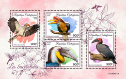 Central Africa   2019 Fauna  Hornbills  S201907 - Central African Republic