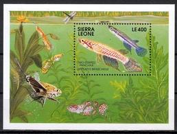 Sierra Leone MiNr. Bl. 165 ** Fische - Sierra Leone (1961-...)